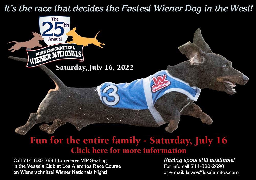 Click to go to Wienerschnitzel Wiener Nationals Home Page